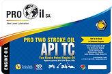 PRO TWO STROKE OIL_20LT.jpg