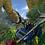 Thumbnail: King Kong Of Skull Island VR