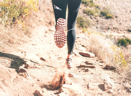 Walk, Run, Soar: Finding the Courage to Love Again