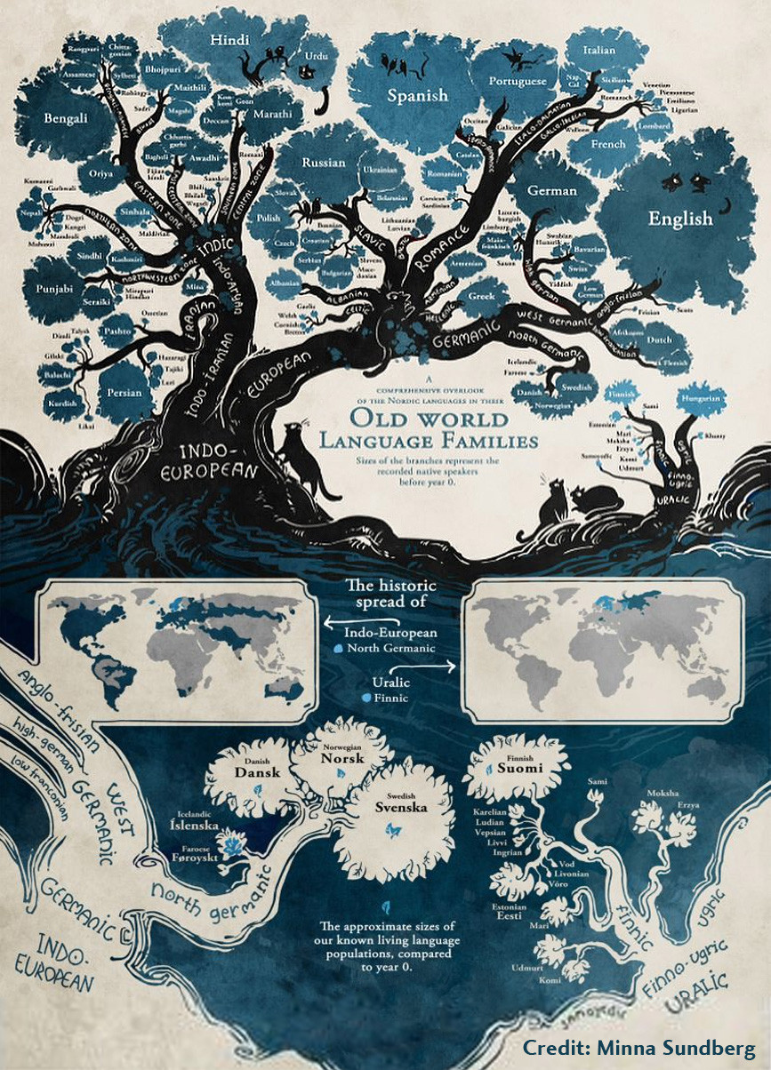 Language Tree Diagram - Minna Sundberg