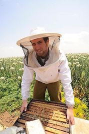 כוורת דבורים ודבוראי במשק לין