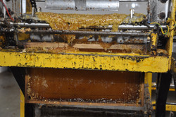 משק לין ייצור דבש