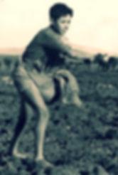 זריעה בשדה של משק לין
