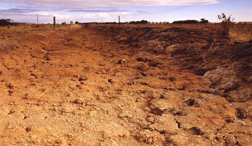 shoot_the_dust004_rt1.jpg