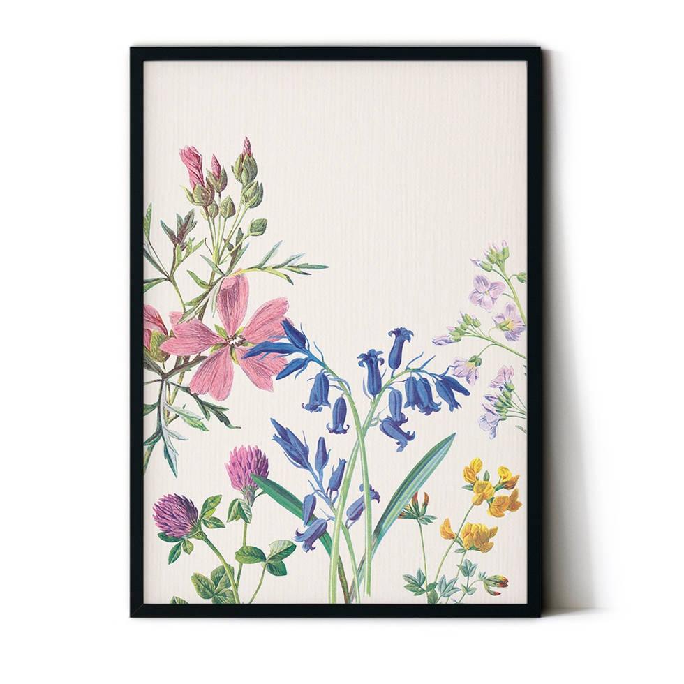 art poster botanical design
