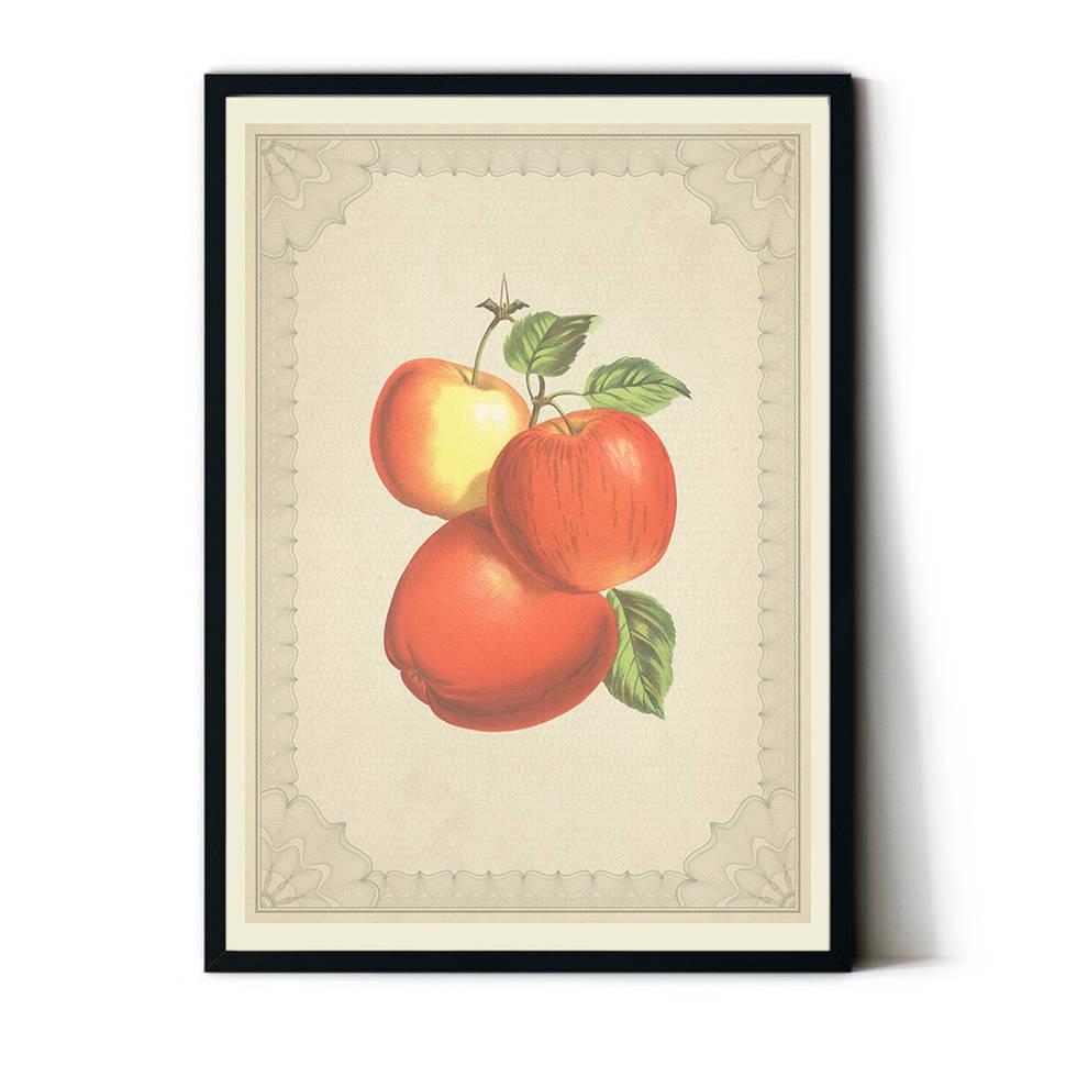 art poster apple vintage design