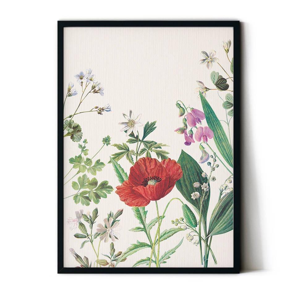 art poster poppy design
