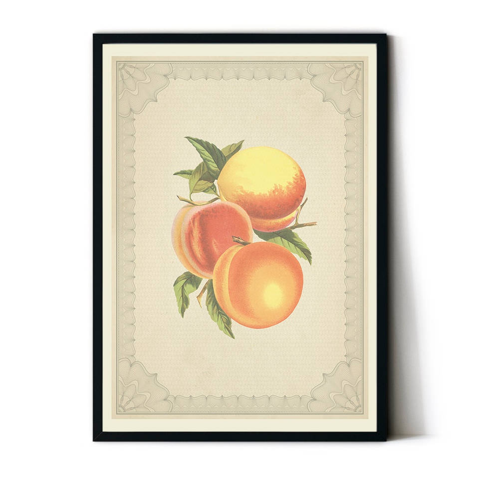 art poster peach design vintage