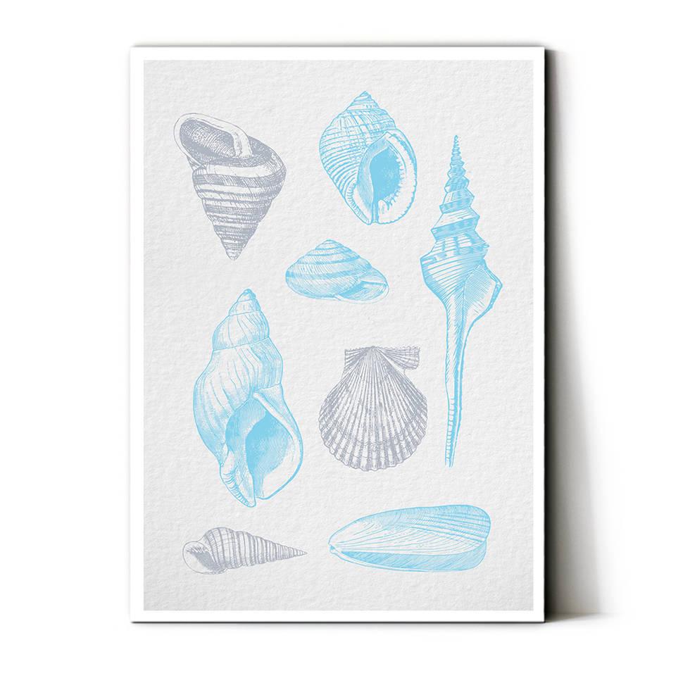 art poster shell design