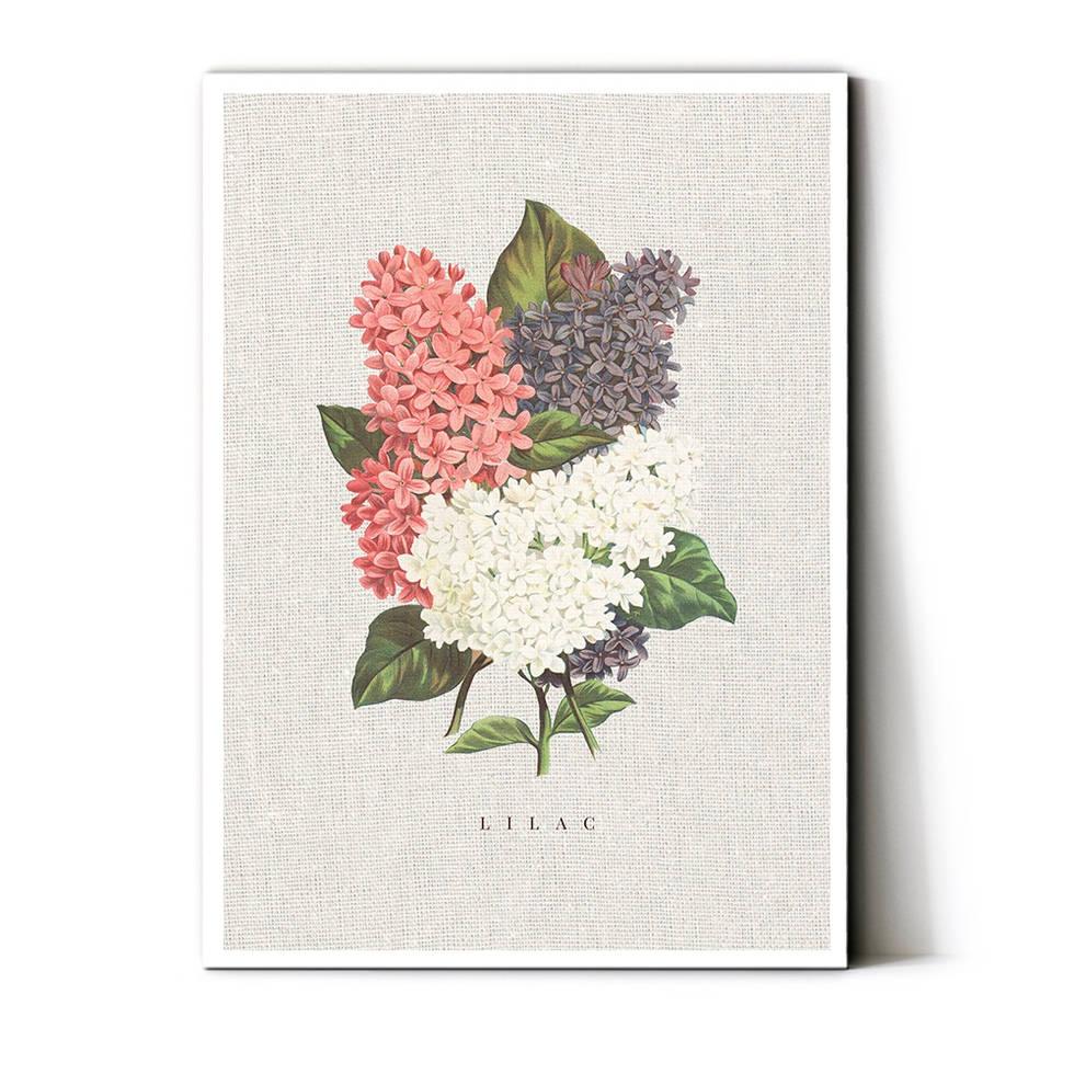 art poster lilac vintage design
