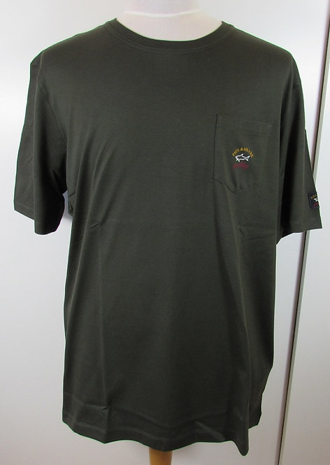 C1P11105I Paul & Shark Tee Shirt in Green (480)