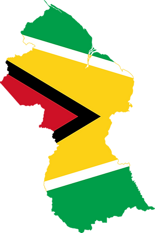 Flag-map_of_Guyana.svg.png