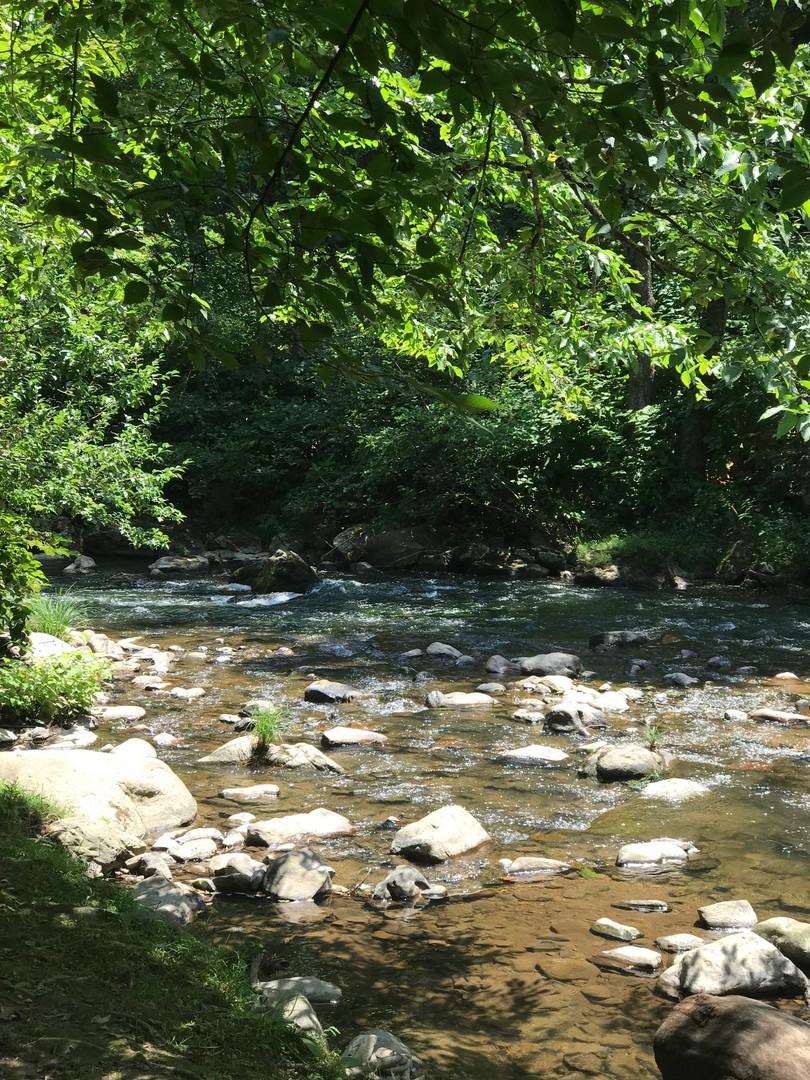 Sweet Creek View