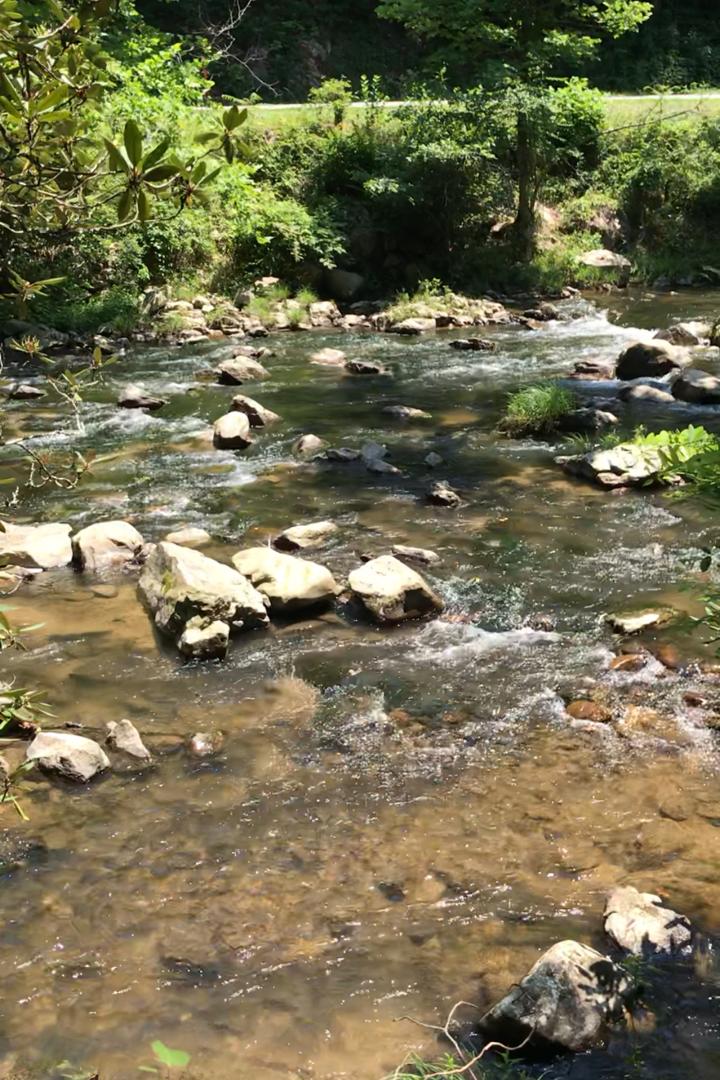 Beaver Cut Creek View