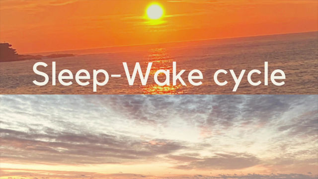 Your Sleep Wake Cycle is important