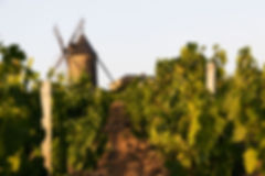 Moulin_à_Vent.jpg