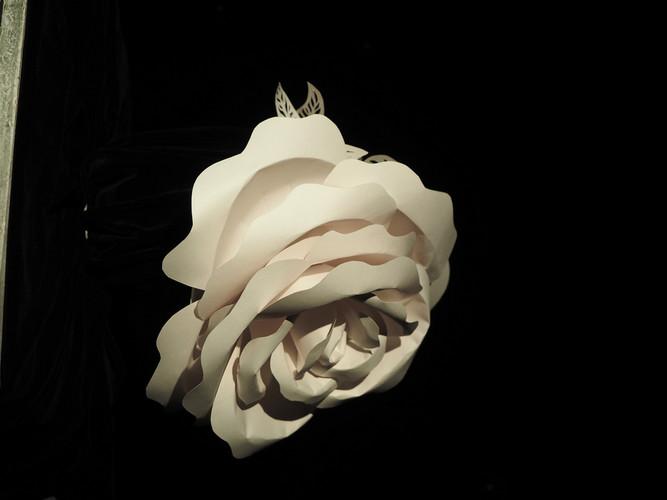 Шляпа розы, Бумага, 30х50, 2017
