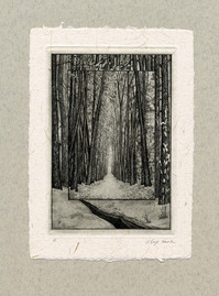 """Темные аллеи"" 100 х 140 мм, офорт, 2007"