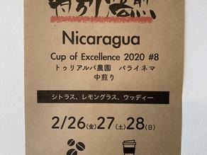 特別焙煎 Nicaragua COE#8