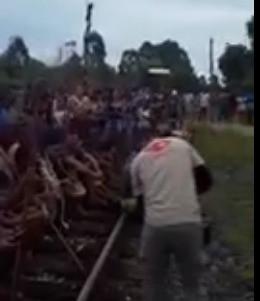 Tupiniquim ocuparam a estrada de ferro Barra do Riacho Aracruz