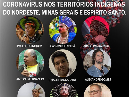 Coronavírus nos territórios indígenas do Nordeste, Minas Gerais e Espírito Santo