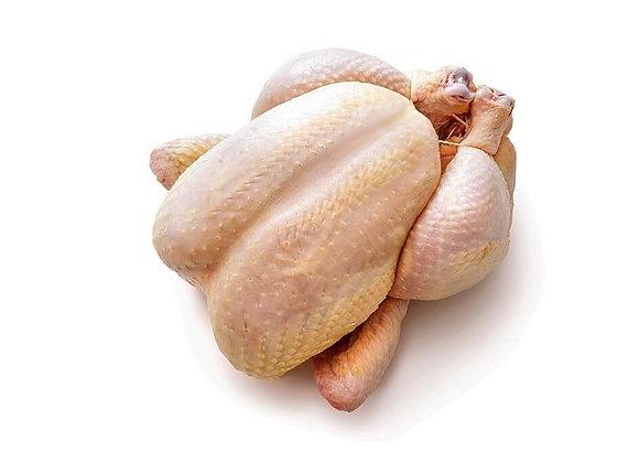 Ayam Broiler (Kg)