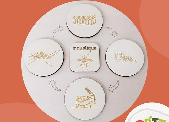 Plateau seul - Le moustique