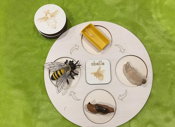 Plateau complet - L'abeille