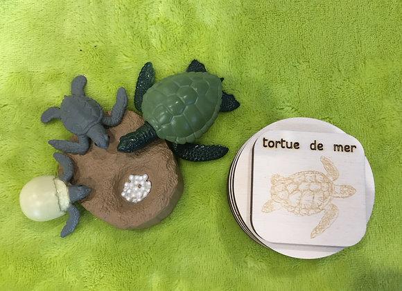 Disques bois et figurines - La tortue de mer