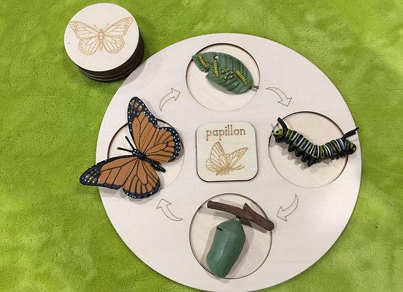 Plateau complet - Le papillon