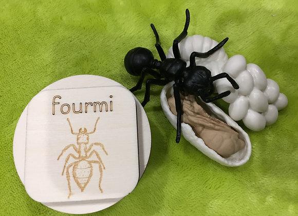 Disques bois et figurines - La fourmi