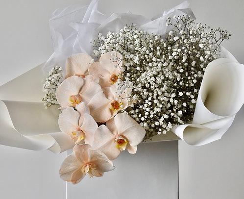Orchid bouffée