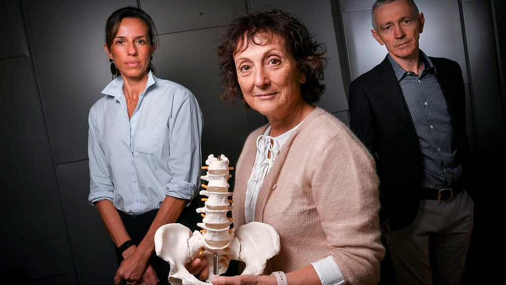 Professor Rachelle Buchbinder (centre) with Associate Professor Manuela Ferreira and Professor Chris Maher