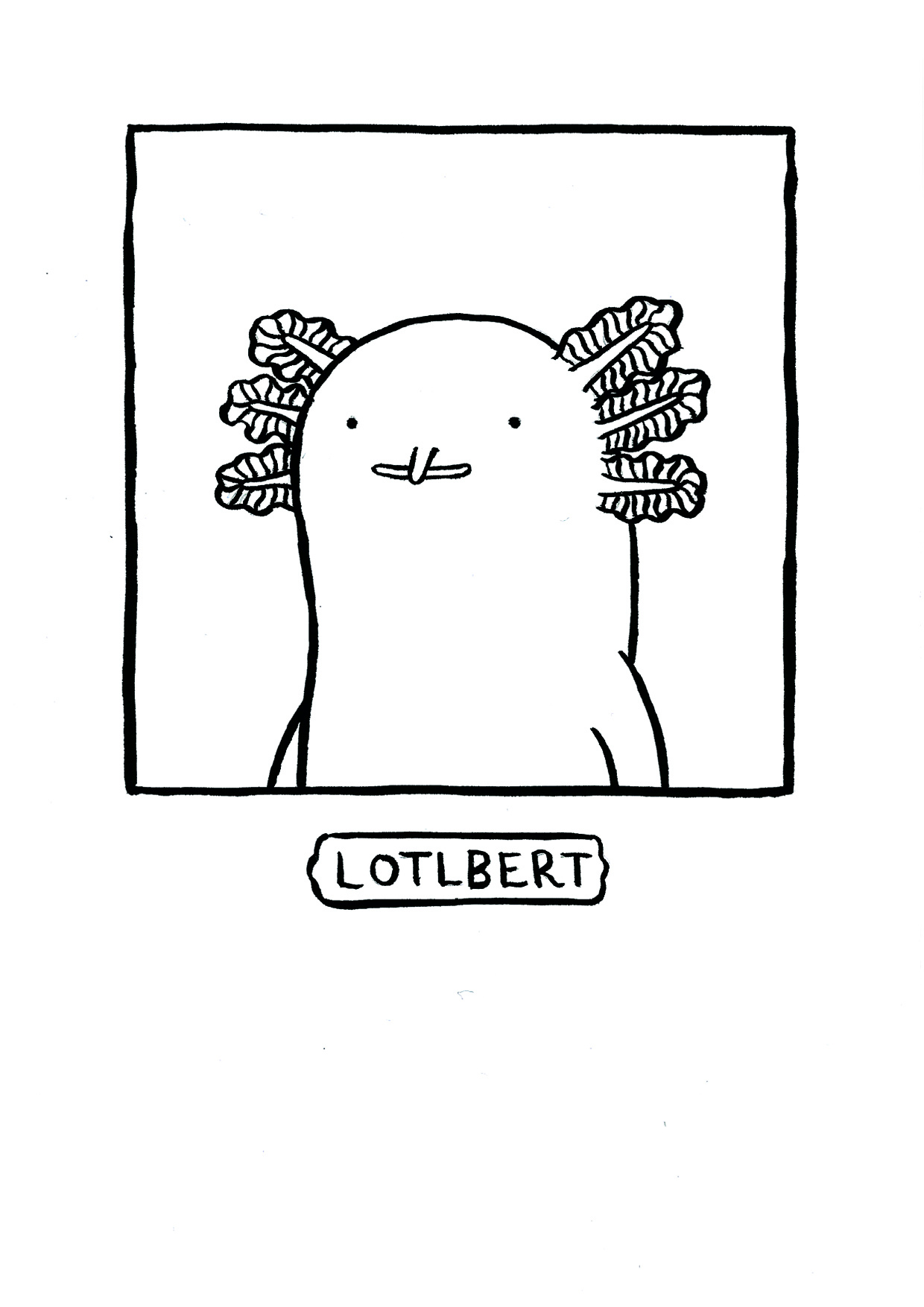 Lotlbert