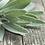 Thumbnail: Sea Salt & Sage Soy Wax Melts