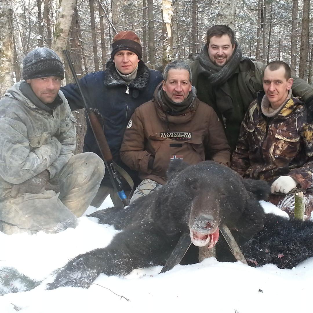 oso siberiano