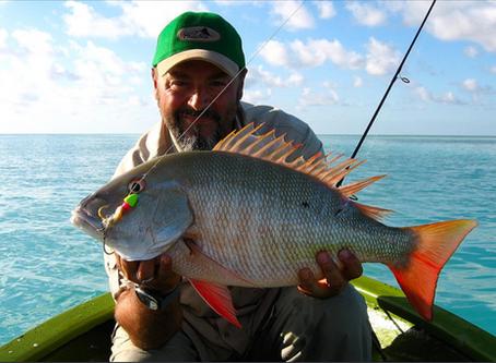 ¿Cuándo y dónde se puede cazar y pescar durante la desescalada?