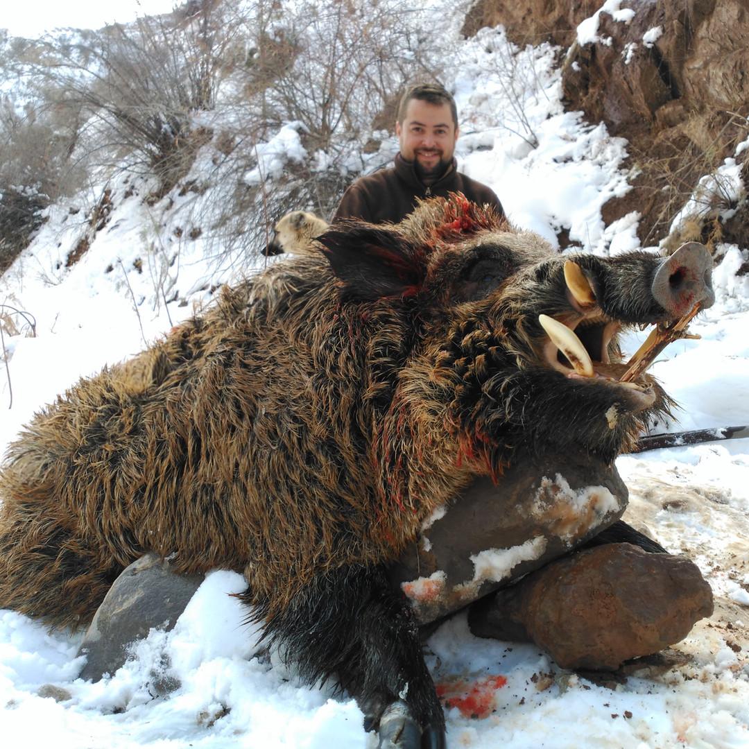 cochino tadjikistan 2.2.jpg