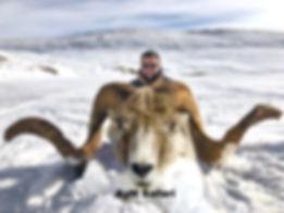 UROGALLO Y GALLO LIRA rusia caza