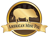 AmericanMiniPig-768x590.png