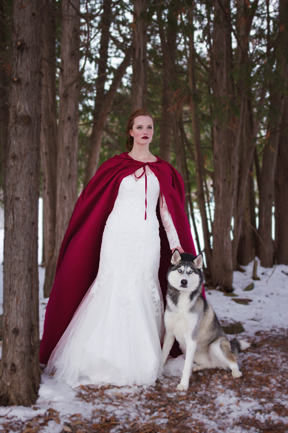Bride and wolf in the forest