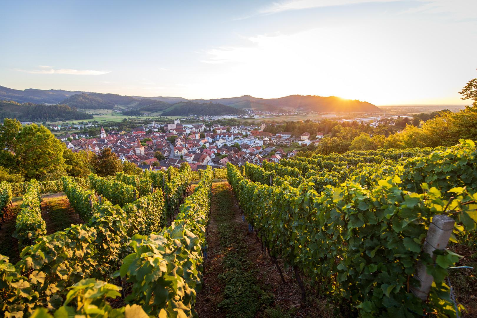 Summer in Gengenbach