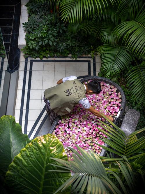 Bensley Collection Shinta Mani, Siem Reap