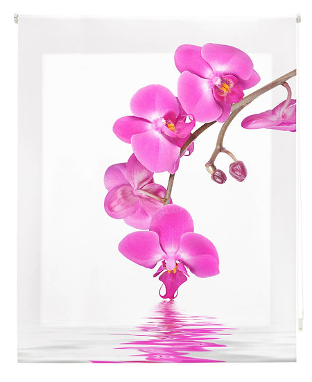 Estor Digital Zen Orquídea