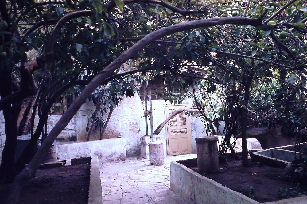חצר מרוצפת במנזר אבטימיוס