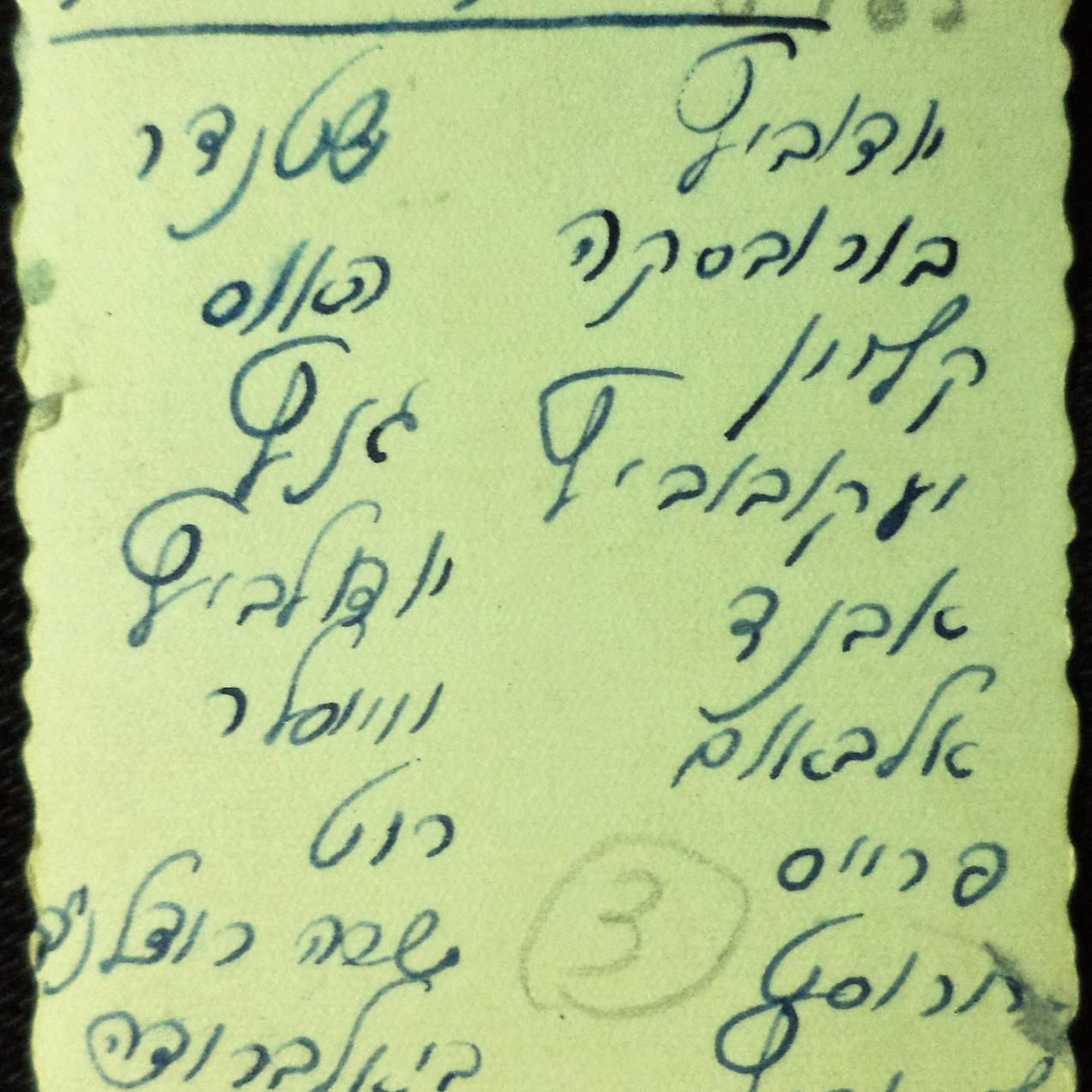 שמות ילדים שרשמה מרגלית בקפריסין
