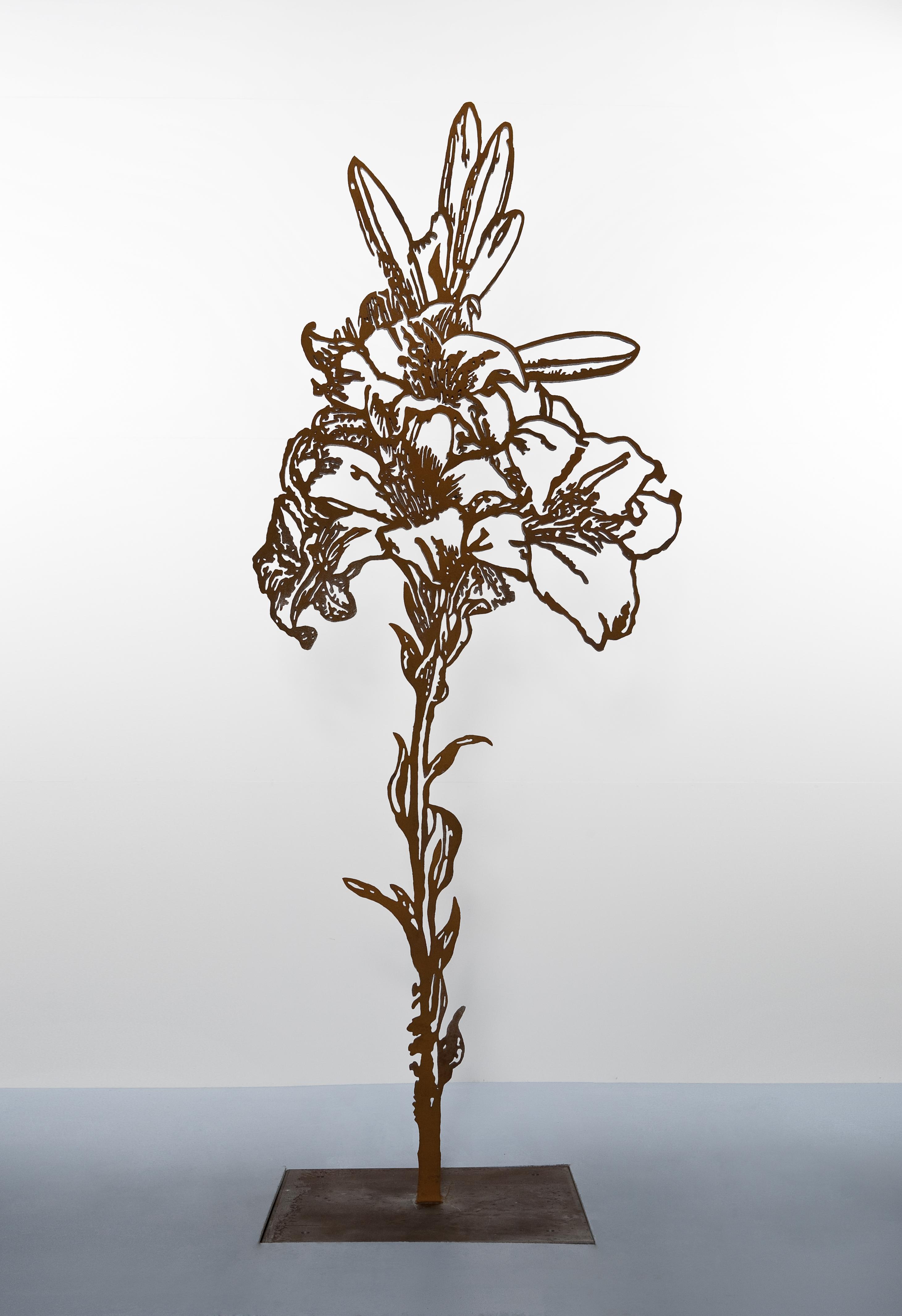 Wild Grow, 2010