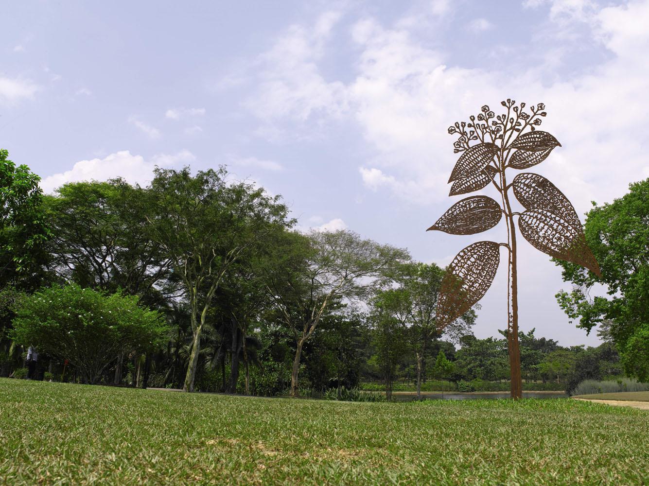 Dry Leaves, 2012