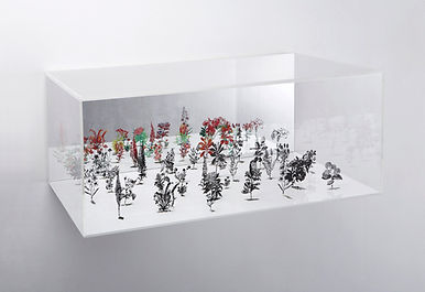 Circle Boxes,  Zadok Ben-David