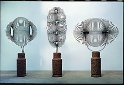 Magnetic Fields, Zadok Ben David